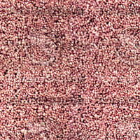 carpet008 medium.jpg