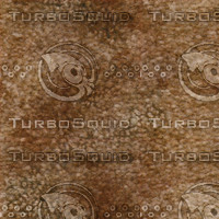 carpet024 medium.jpg