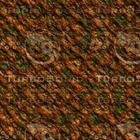 skin alien AA20245.jpg