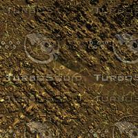 skin alien AA20307.jpg