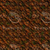 skin alien AA20407.jpg