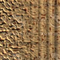 skin shell AA20423.jpg