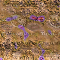skin alien AA20611.jpg