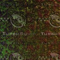 skin alien AA22243.jpg