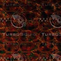 skin alien AA22313.jpg