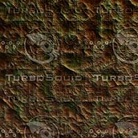 skin alien AA22427.jpg