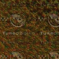 skin alien AA22433.jpg
