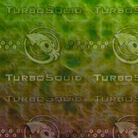 skin alien AA22441.jpg