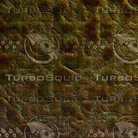 skin alien AA22613.jpg