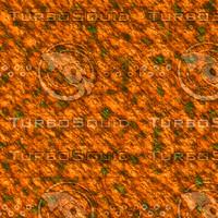 skin alien AA22635.jpg