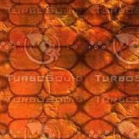 skin alien AA22637.jpg