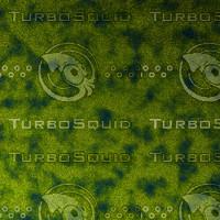 skin alien AA22839.jpg