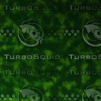 skin alien AA22853.jpg