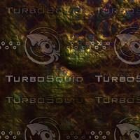 skin alien AA26005.jpg