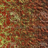 skin alien AA26029.jpg