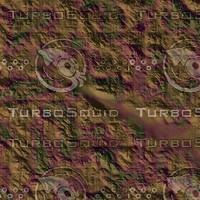 skin alien AA26129.jpg