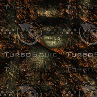 skin alien AA26135.jpg
