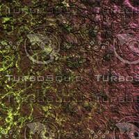 skin alien AA26145.jpg