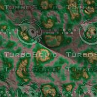 skin alien AA26201.jpg
