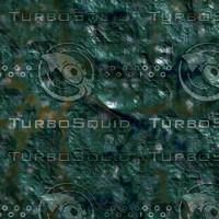 skin alien AA26431.jpg