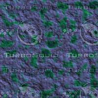 skin alien AA26433.jpg