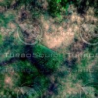 skin alien AA26639.jpg