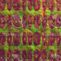 fruit nature AA30837.jpg