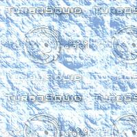 snow nature AA31029.jpg