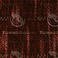 tree bark AA31211.jpg