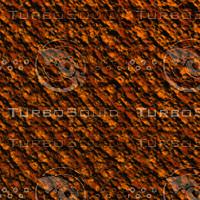 tree bark AA31217.jpg
