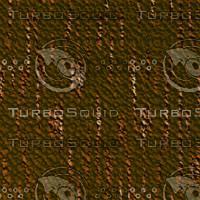 tree bark AA31221.jpg
