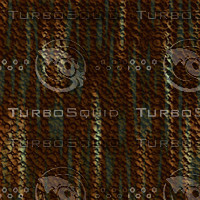 tree bark AA31225.jpg