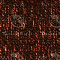 tree bark AA31229.jpg