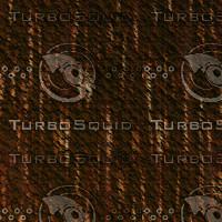 tree bark AA31247.jpg