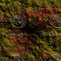 nature yellow AA34409.jpg