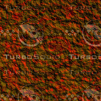 nature rough AA36013.jpg