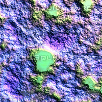 nature multicolored AA37137.jpg