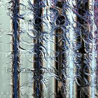 nature veiny AA37903.jpg