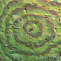 wood green AA40709.jpg