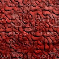 clay red AA40937.jpg
