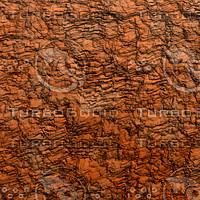 clay orang AA40941.jpg