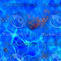 veiny blue AA41721.jpg