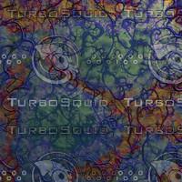 blue veiny AA42025.jpg