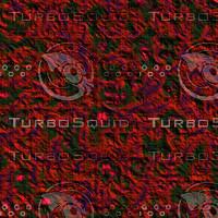 rough red AA42807.jpg