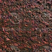 dark spiky AA42901.jpg