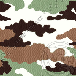Camo_French_forest_T.jpg