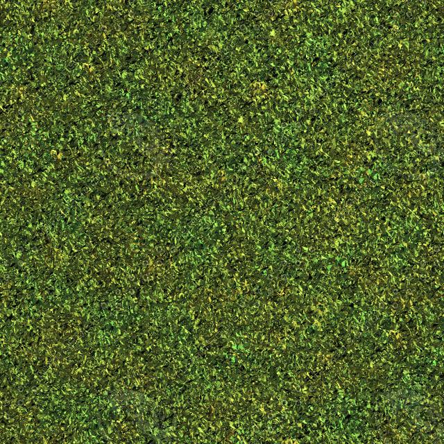 Grass Yellow.jpg