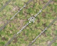 HFD_GrassPatchy01_Lge.jpg