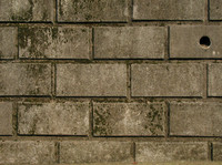brick0019.jpg