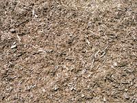dirt02.jpg